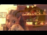 «котики» под музыку Калинки Малинки  - Такие Вечеринки. Picrolla