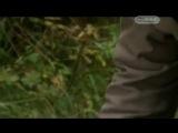 Клады России - Золото Колчака Д/Ф (2009)