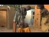 Лечение  головной боли по африкански=)